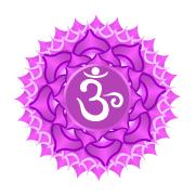 Pedras do Chakra Coronário — Ametista e Cristal de Quartzo
